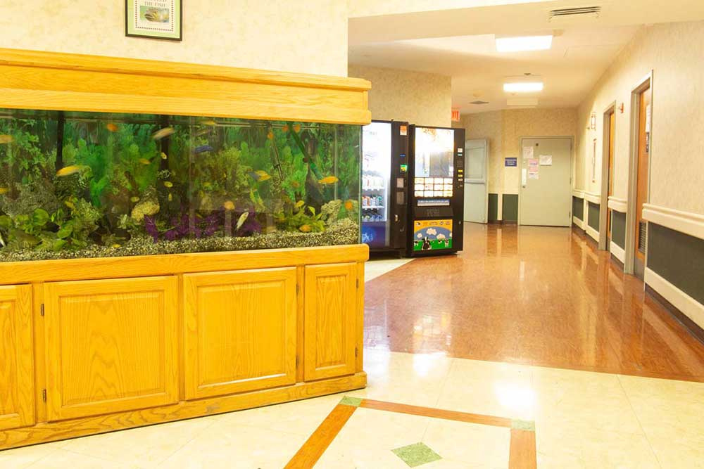 Large aquarium filled with fish in hallway at Downtown Brooklyn Nursing and Rehabilitation Center.